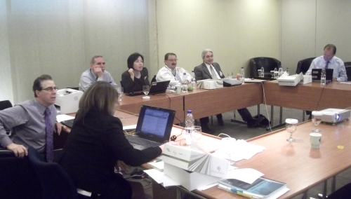 The Congress Scientific Program Steering Committee Meeting in Dubai, UAE Dec. 2010