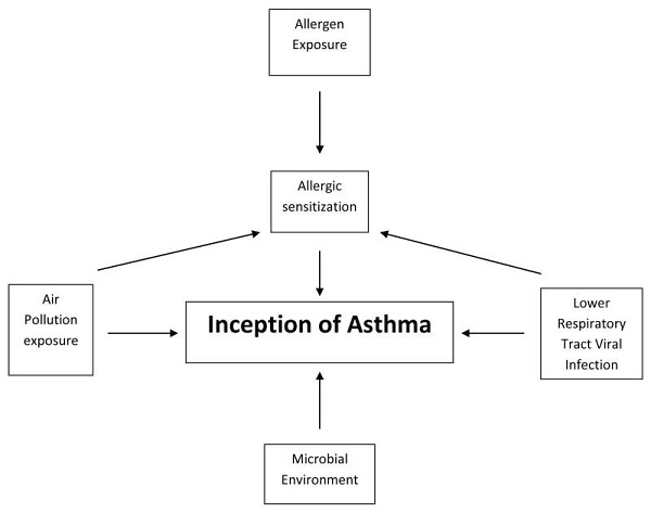 Allergic Asthma: Symptoms and Treatment | World Allergy