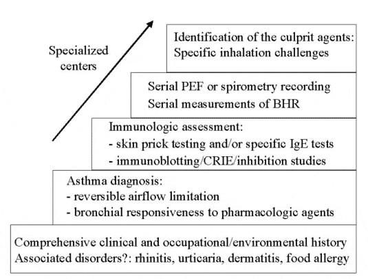 Diagnosis of Occupational Asthma | World Allergy Organization